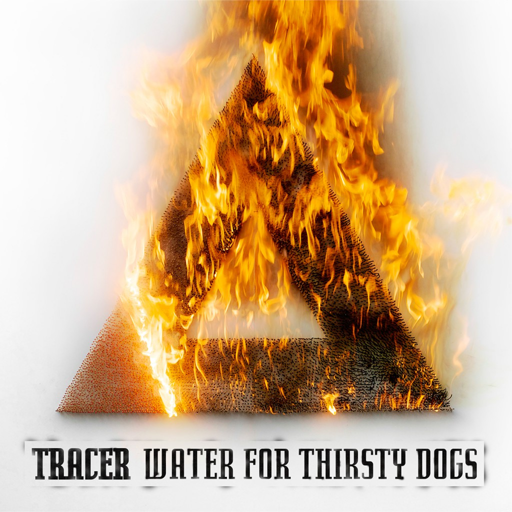 Water for Thirsty Dogs (2015)